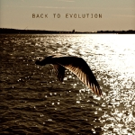 Artwork of `Back to Evolution` by Miss Gilioux & Omid Shirazy